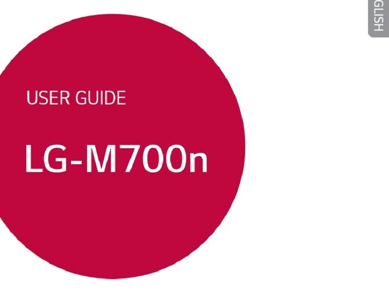 LG Q6 LGM700N